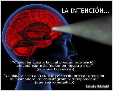 Prestar atención